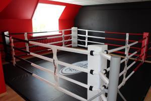 Резиденция бокса Брянск