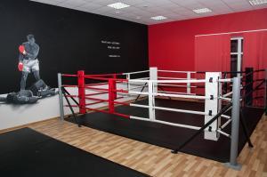 Ринг боксерский напольный на упорах