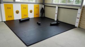 Стеновой протектор с сеткой в спортивном клубе «Сафари» г. Липецк