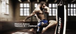Профессиональный боксёрский мешок - Максим Дивнич